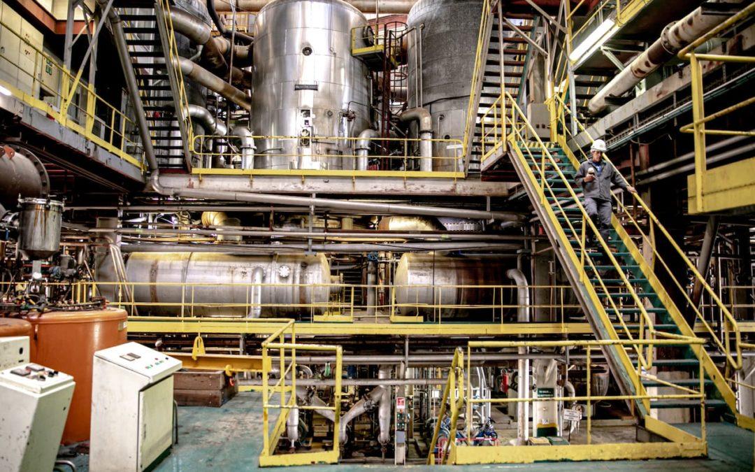 Le Service Procédés et Innovations Industriels au cœur des sucreries