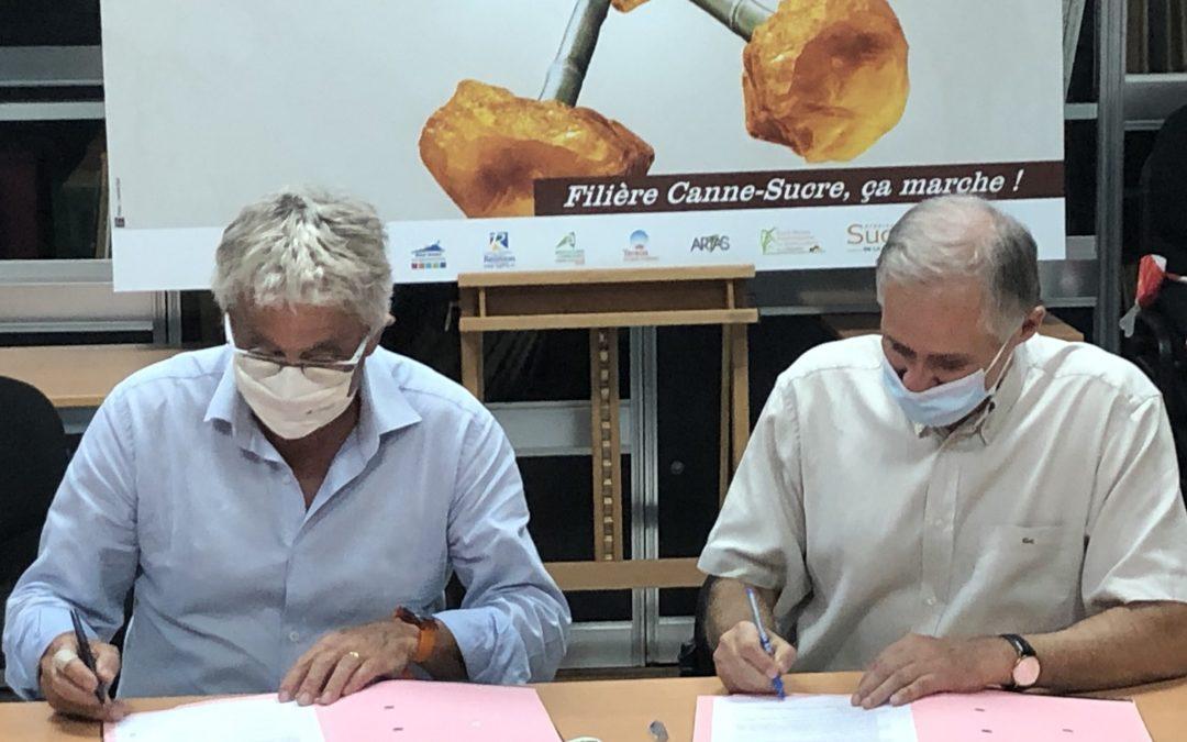 eRcane-Cirad : Partenariat scientifique renouvelé